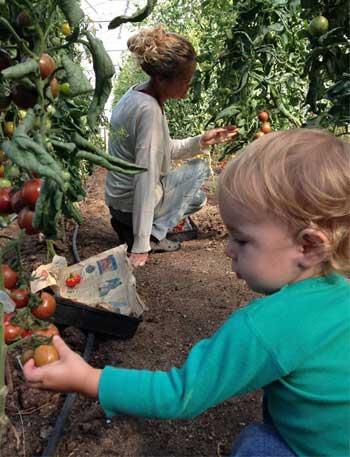 Earthly Pleasures Organic Farm